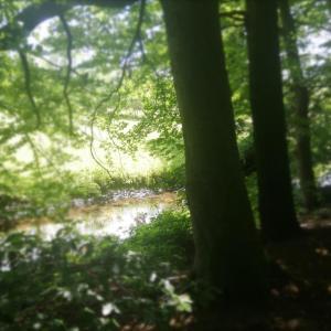 Heideweg Ecke Seilerweg