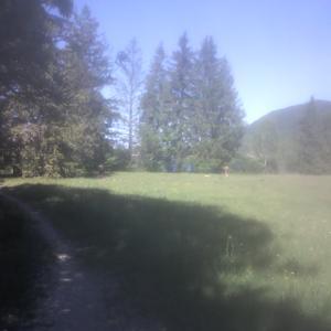 badeplatz wankmillerwiese
